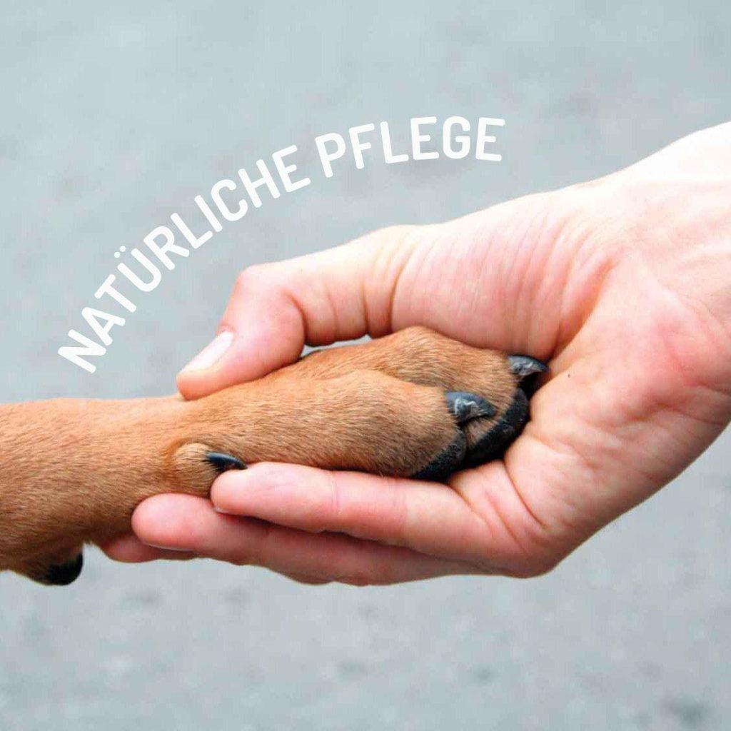 """""""Natürliche Pflege"""" Pfote in einer Hand"""