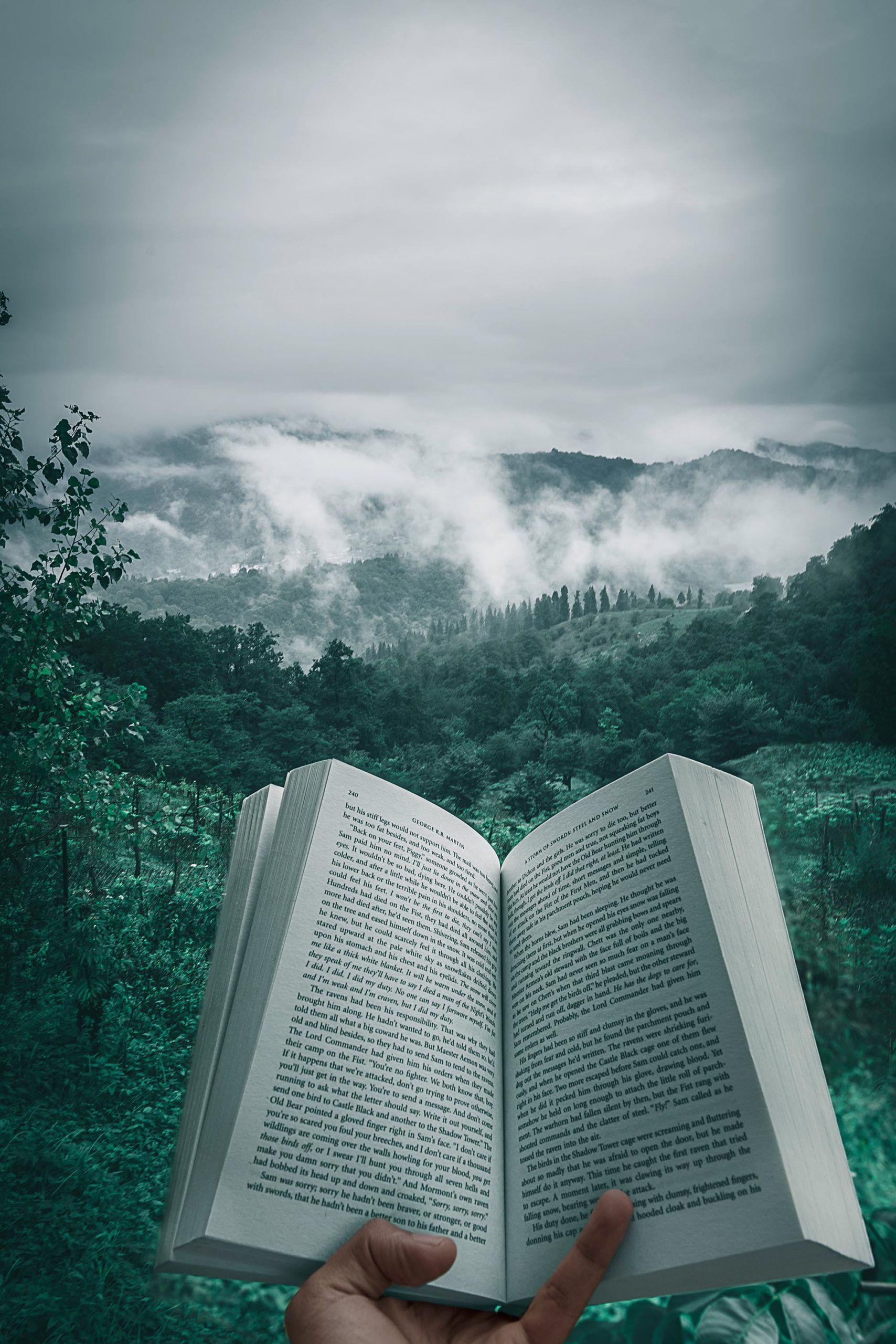 Buch in Natur